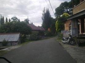 Image1043